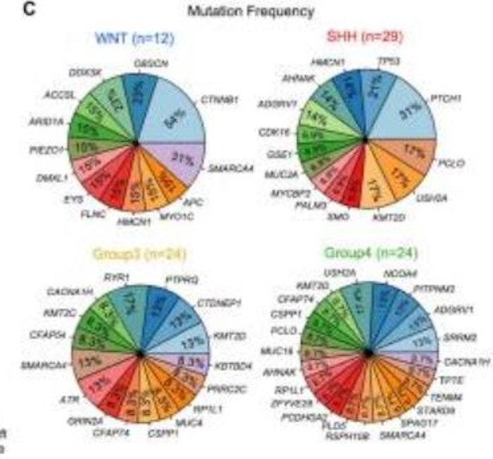 Genomic-Transcriptomic-Analyses-RevealsZNF124.JPG