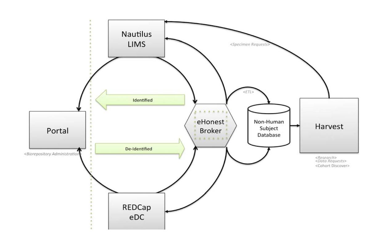 Scalable Biobanking: A Modular Electronic Honest Broker