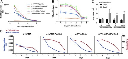 fig-1 Purification of mRNA Encoding Chimeric Antigen Receptor is Critical for Generation of Robust T-Cell Response.jpg
